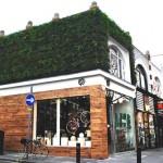 Ideas de negocios ecológicas, una tienda verde pero con varias alternativas de negocios