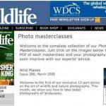Cursos o clases gratis para aprender fotografía gracias a la BBC