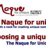 Naque, un website que le ayudará gratis a encontrar el nombre para su idea de negocios, website o blog