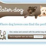Convertir ideas de negocios para hacer en casa en grandes negocios, el caso del cuidador de perros o mascotas