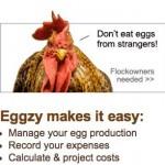Eggzy una comunidad virtual para los que quieren ganar dinero con las gallinas y los huevos y comer sano