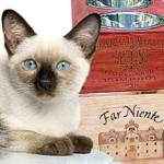 Diseño y venta de cajas de madera para dar de comer a las mascotas, una inversión rentable gracias al internet