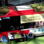 Plantas y vegetación en el techo de los buses una propuesta de negocios ecológica